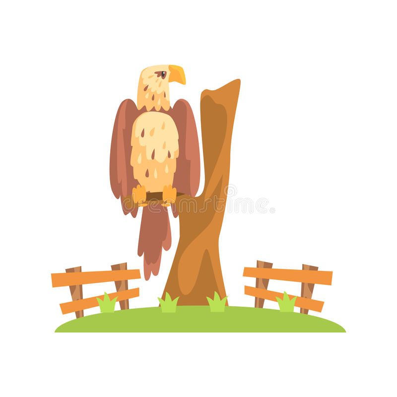 Bald American Eagle Sitting On Tree Branch In Open Air Zoo Enclosure stock illustration