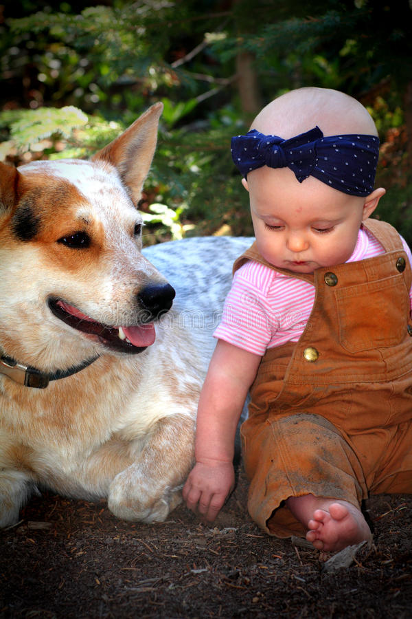 Bald Baby in Dirt with Dog stock photography