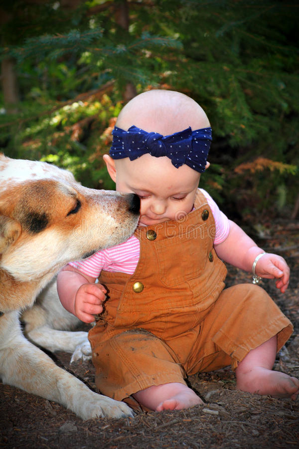 Bald Baby in Dirt with Doggie royalty free stock images