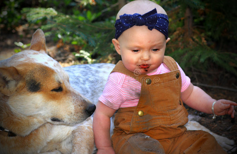 Bald Baby Eating Dirt with Doggie stock images