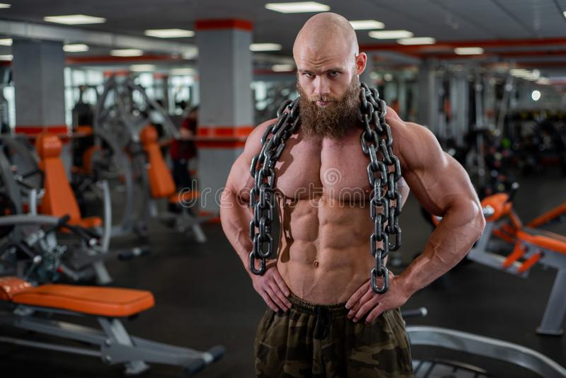 A bald, bearded bodybuilder with large relief muscles holds a heavy thick chain in his hands. Bright gym. A bald, bearded bodybuilder with large relief muscles royalty free stock photos