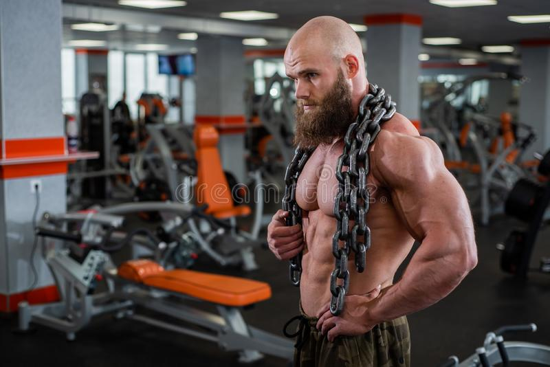 A bald, bearded bodybuilder with large relief muscles holds a heavy thick chain in his hands. Bright gym. A bald, bearded bodybuilder with large relief muscles royalty free stock image