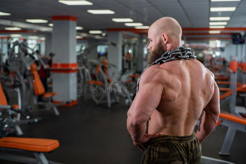 A bald, bearded bodybuilder with large relief muscles holds a heavy thick chain in his hands. Bright gym. A bald, bearded bodybuilder with large relief muscles stock image