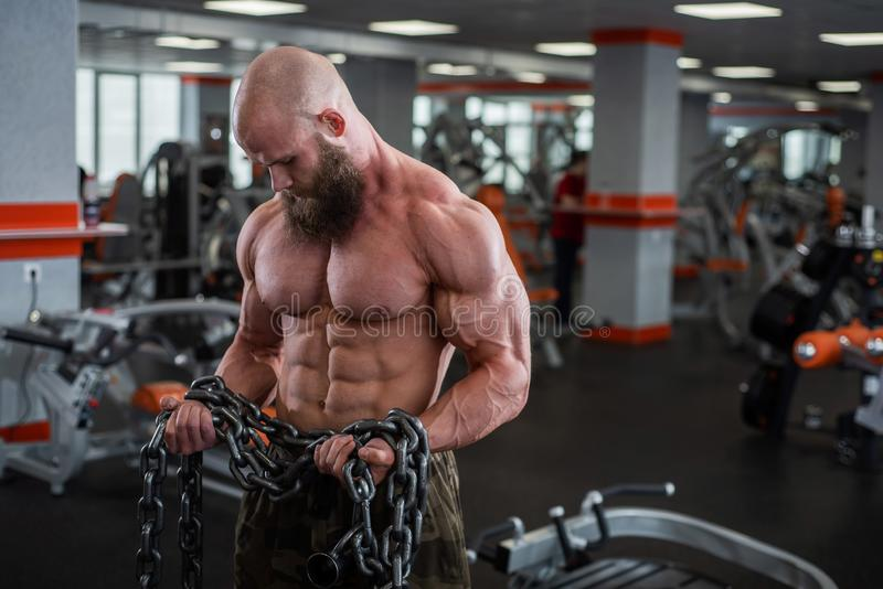 A bald, bearded bodybuilder with large relief muscles holds a heavy thick chain in his hands. Bright gym. A bald, bearded bodybuilder with large relief muscles royalty free stock photo