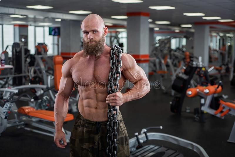 A bald, bearded bodybuilder with large relief muscles holds a heavy thick chain in his hands. Bright gym. A bald, bearded bodybuilder with large relief muscles royalty free stock images
