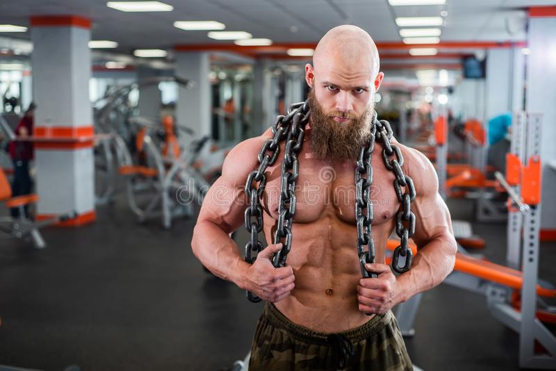A bald, bearded bodybuilder with large relief muscles holds a heavy thick chain in his hands. Bright gym. A bald, bearded bodybuilder with large relief muscles stock photography