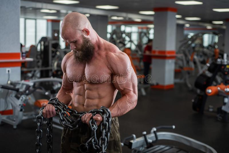 A bald, bearded bodybuilder with large relief muscles holds a heavy thick chain in his hands. Bright gym. A bald, bearded bodybuilder with large relief muscles stock photo