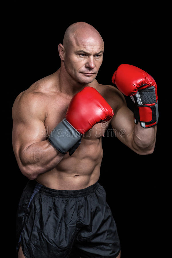 Bald boxer with red gloves. Against black background royalty free stock photography