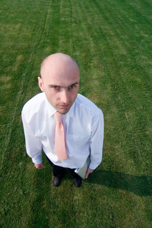 Download Bald businessman on grass stock photo. Image of stand - 2307144
