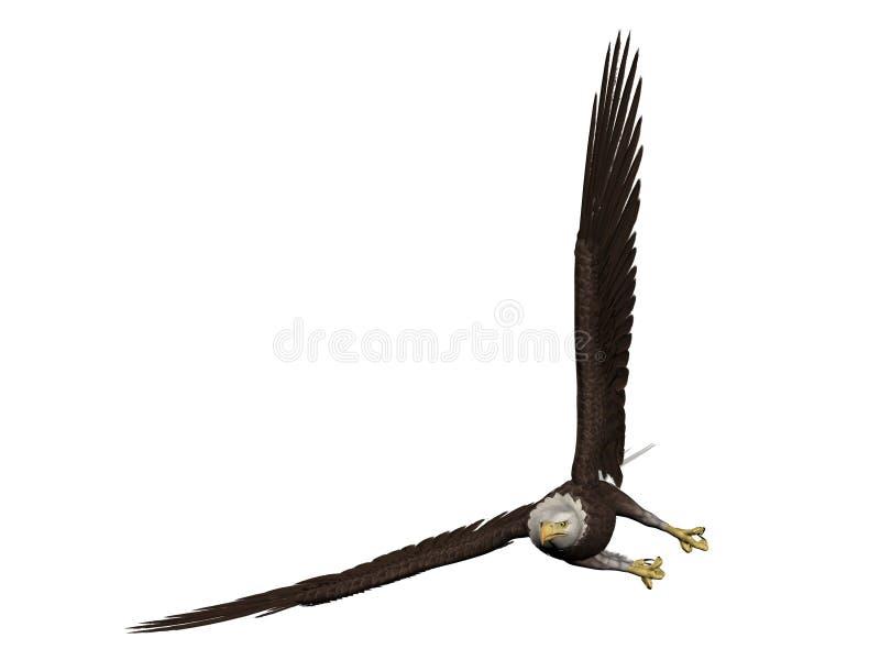 Download Bald Eagle stock illustration. Image of raptor, illustration - 9736294
