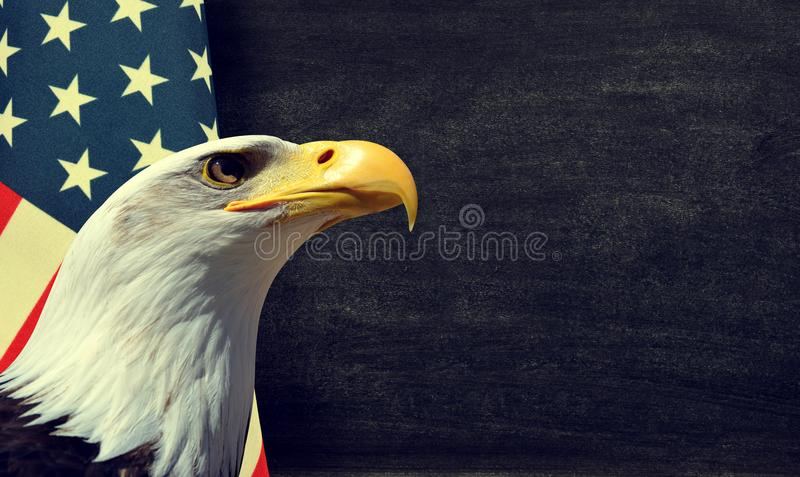 Bald Eagle and American flag stock image