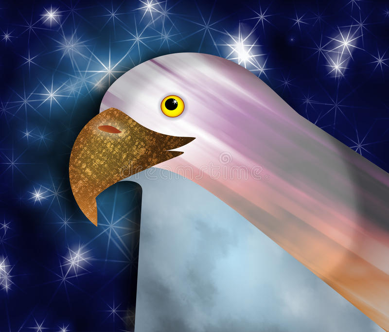 Bald Eagle stock illustration