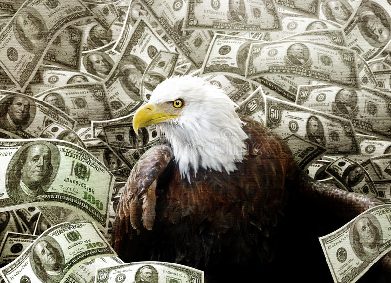 Bald Eagle in money. Concept of a bald eagle sinking in a hole of money to depict an endangered species and their importance being unimportant when compared to stock photo