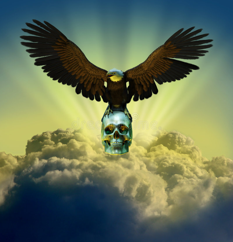 Download Bald Eagle On Skull In Sky Royalty Free Stock Photos - Image: 246138