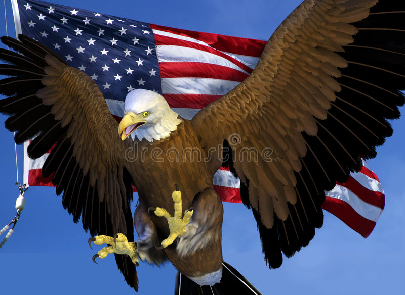 Bald Eagle with US Flag royalty free illustration