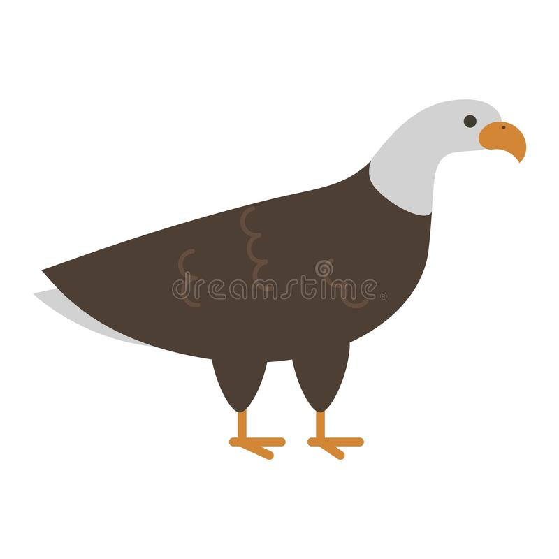 Bald eagle vector bird stock illustration