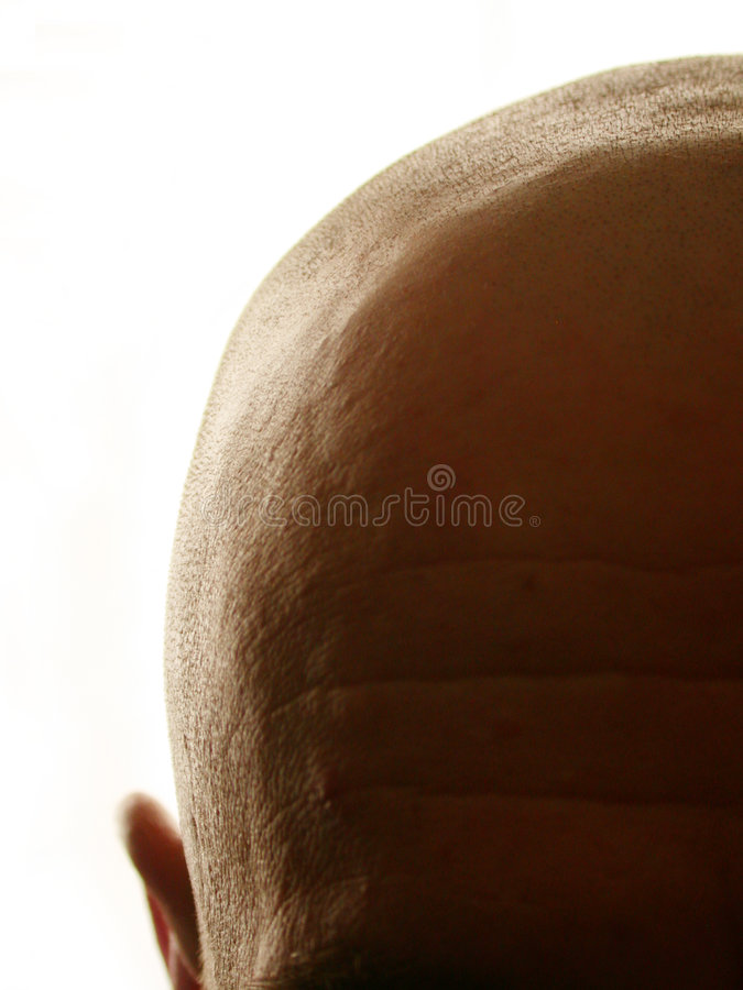 Bald Head. Close up silhouette of a man's bald head on white background. Room for your text. Thought, thinking, ideas or hairloss