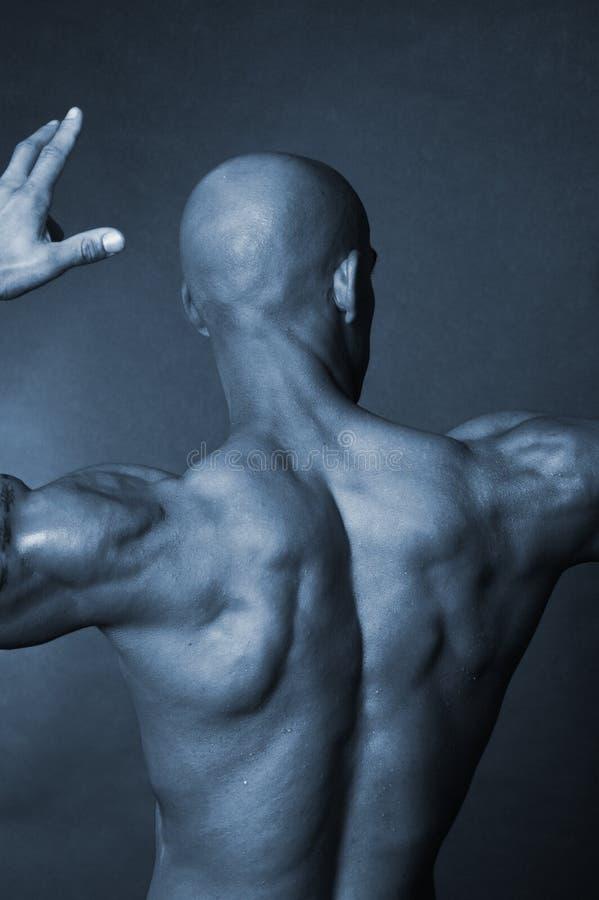 Bald man's back stock photo