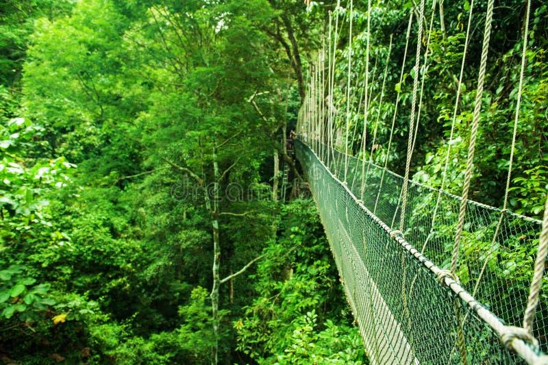 Baldachim bridżowy Malezja fotografia royalty free