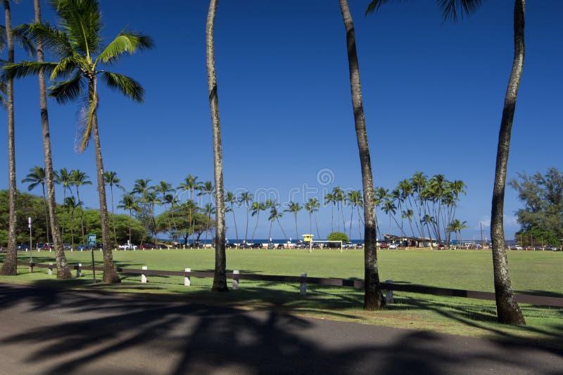 Baldwin Beach Park, north shore, Maui, Hawaii stock images