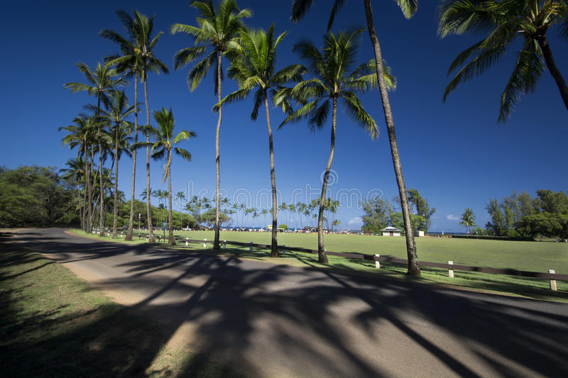 Baldwin Beach Park, north shore, Maui, Hawaii stock image