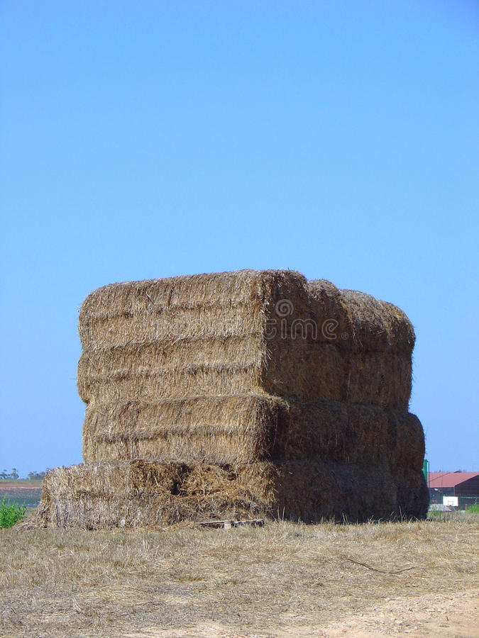 Download Bale of hay stock photo. Image of cereal, outdoor, industry - 26554360