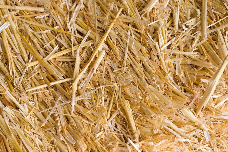 Bale of hay royalty free stock photography