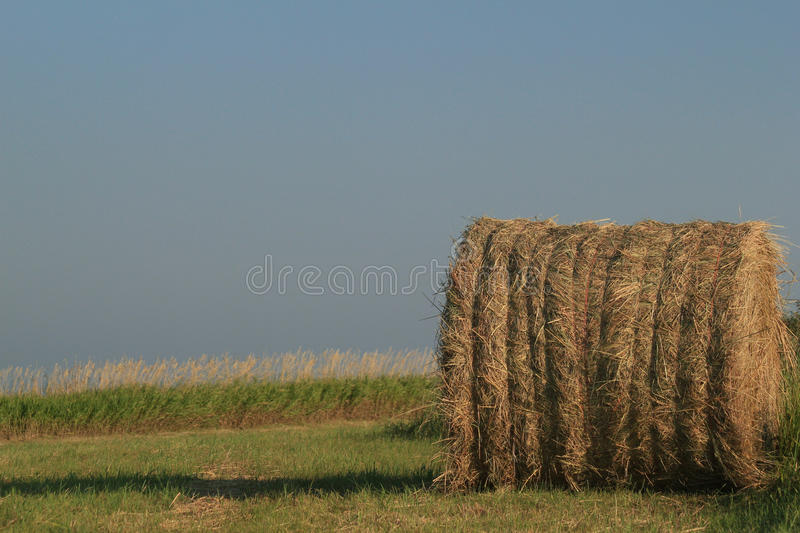 Bale of hay with blue sky. Large round bale of hay tied with twine against a blue sky royalty free stock photography