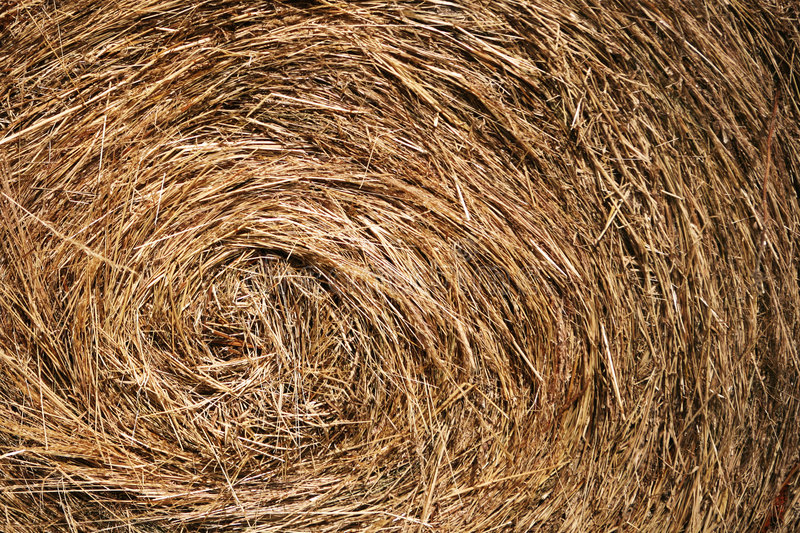 Bale of hay - close up. Close up of a round bale of hay stock photos