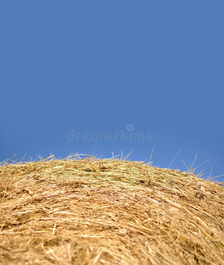 Download Bale of hay stock photo. Image of round, countryside - 31126598