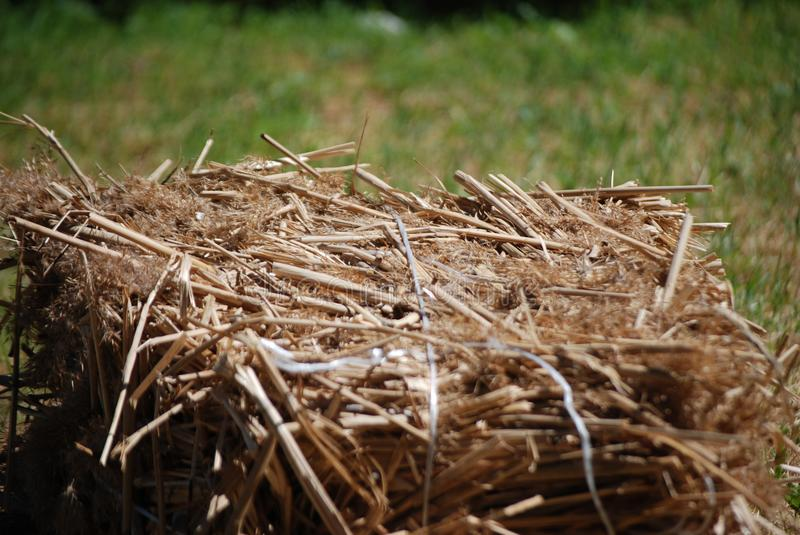 The bale of hay on a green lawn royalty free stock images