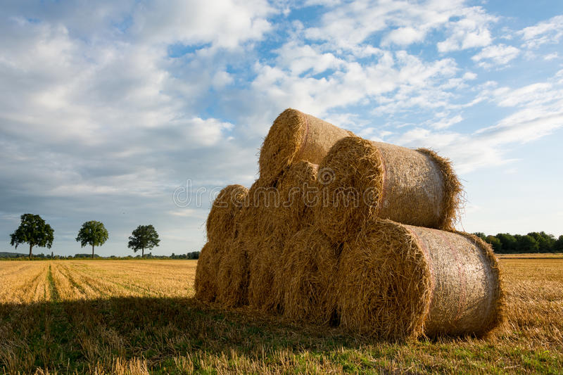 Bale of Hay royalty free stock photos