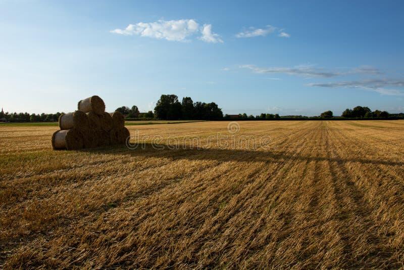 Bale of Hay stock image