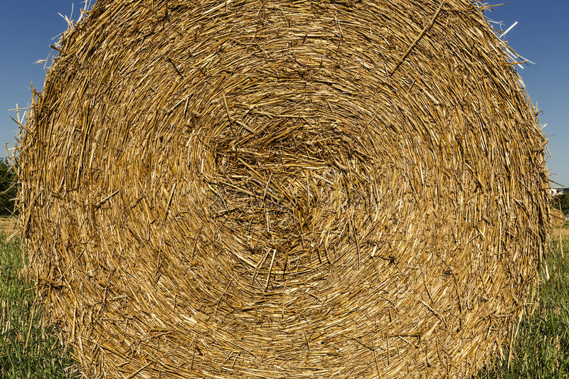 Download Bale of hay stock image. Image of barley, country, grass - 32628203
