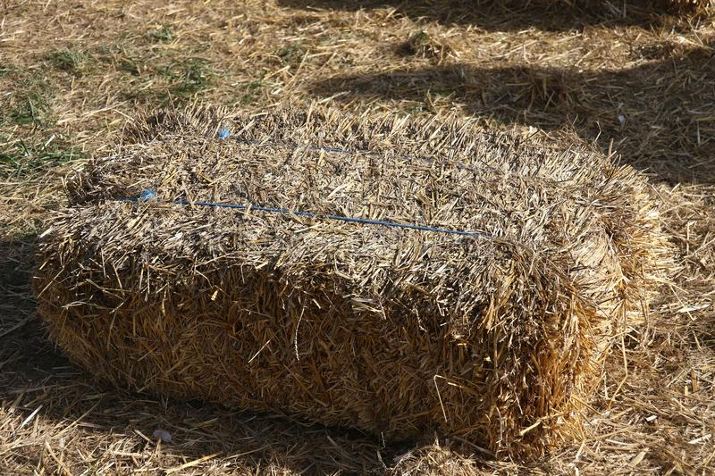 A bale of hay in the sunlight royalty free stock images