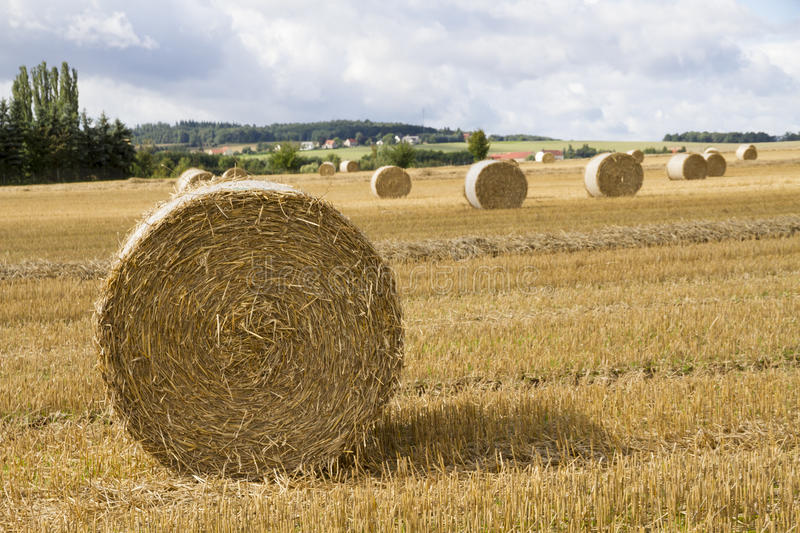 Bale of straw. On a on a stubble field. In background are more . Cloudy weather in the summer royalty free stock photos