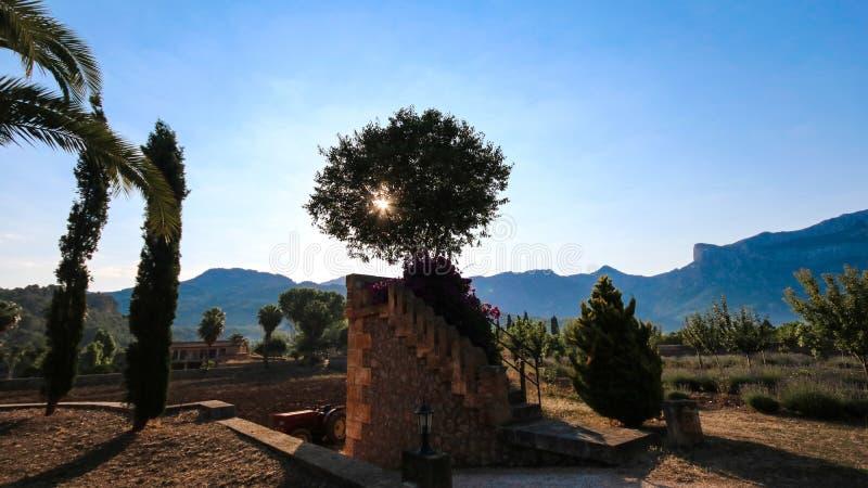 Balearic Island medelhavs- arkitektur av Mallorca, Finca royaltyfri fotografi
