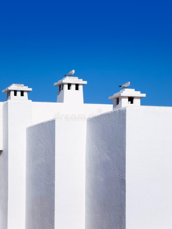 Balearische weiße Mittelmeerhäuser mit Seemöwe stockbilder