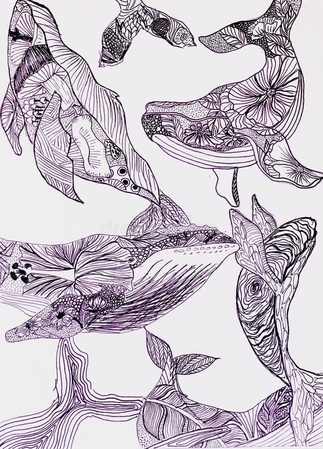 Baleia azul caótica com teste padrão de flor imagem de stock