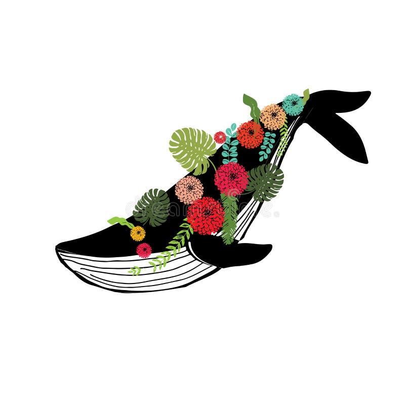 Baleia azul do porto de Vaquita conhecida como a ilustração do vetor do sealife de Cochito ilustração do vetor