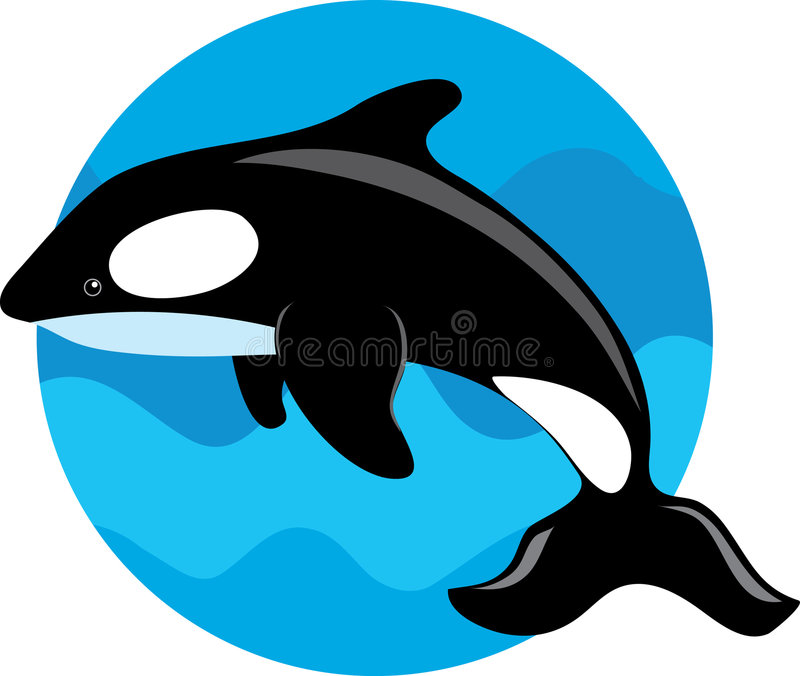 Baleia da orca ilustração stock