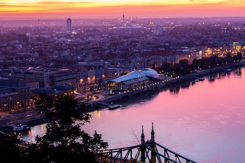 Baleia de Budapest fotografia de stock royalty free