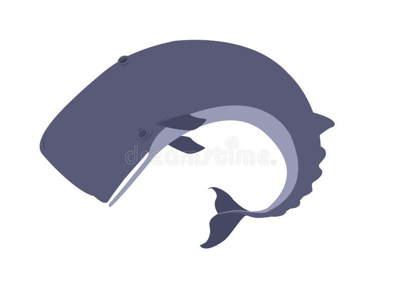 Baleia de esperma inoperante e ida ilustração do vetor