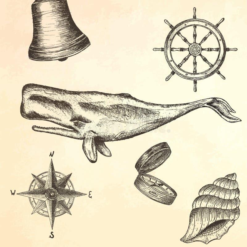 Baleia tirada mão da gravura ilustração do vetor