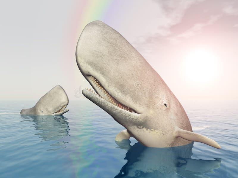 Baleias brancas ilustração stock
