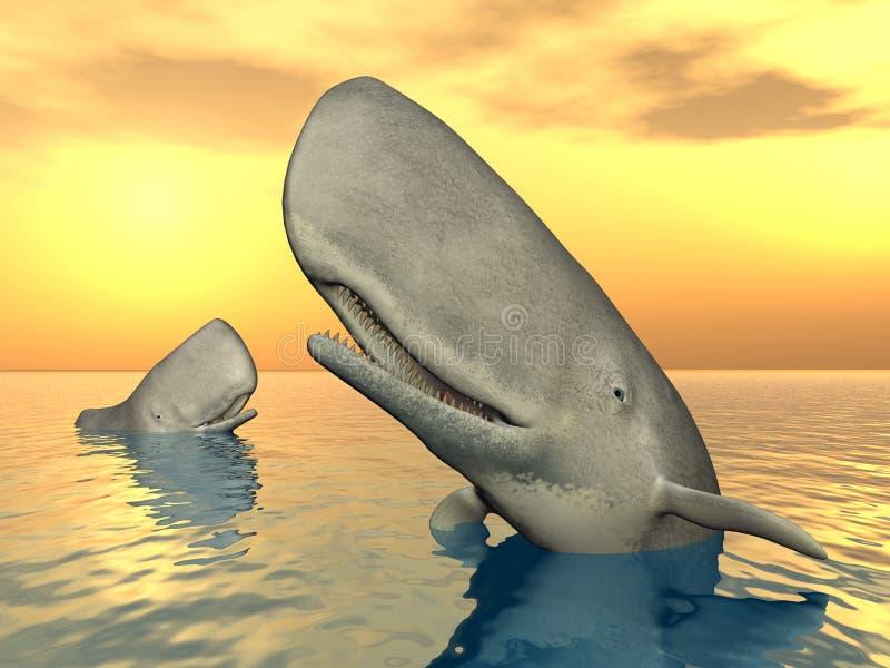 Baleias de esperma ilustração royalty free
