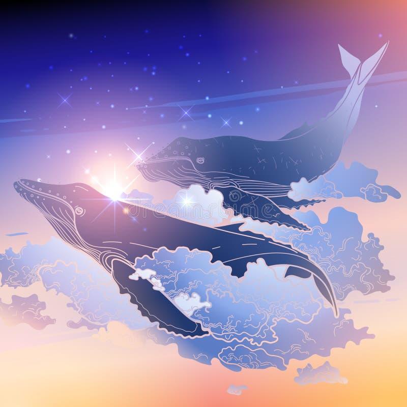 Baleias gráficas que voam no céu ilustração do vetor