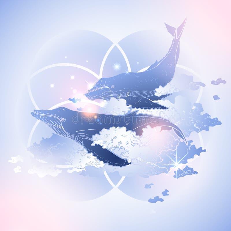 Baleias gráficas que voam no céu ilustração royalty free