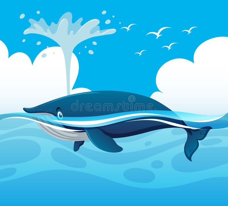 Baleine éclaboussant l'eau dans l'océan illustration libre de droits