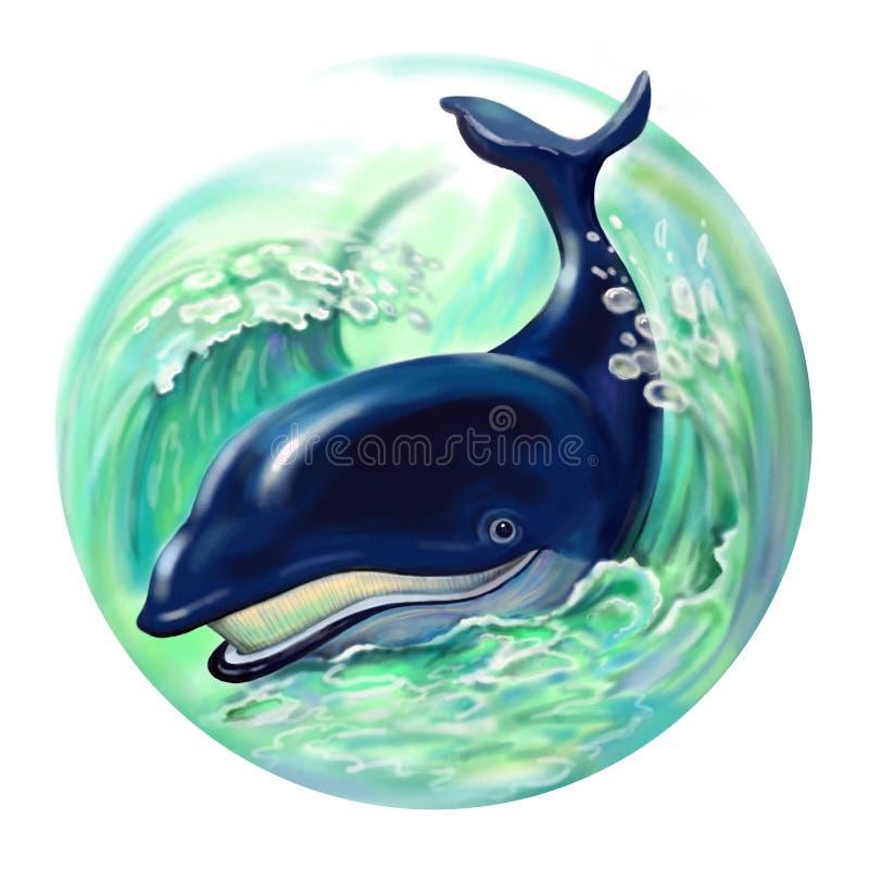 Baleine bleue illustration libre de droits